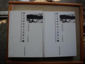 浙江省新农村文化报告(上下)