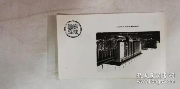賀年卡——恭賀新禧(北京市美術照片公司印行)