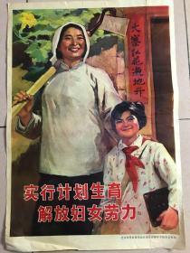 两开 计划生育宣传画 《实行计划生育 解放妇女劳力》 北京市革命委员会计划生育领导小组办公室印.