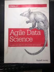 Agile Data Science: Building Data Analytics Applications with Hadoop   有点轻微受潮