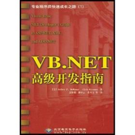 VB.NET高级开发指南