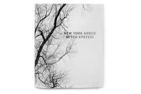 Mitch Epstein: New York Arbor 米奇·爱泼斯坦 纽约的树