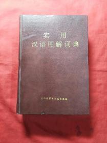 实用汉语图解词典(硬精装、插图本)