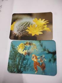 (年历卡) 1977年 黄花宝山、料器金鱼  2张合售