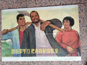 上1-30、跟前辈学习,把青春献给农业,张嵩组作,上海人民美术出版社1964年7月1版2印,规格2开,9品。