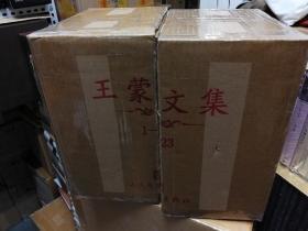 王蒙文集(1-45卷)
