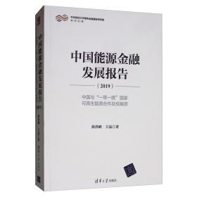 中国能源金融发展报告(2019)