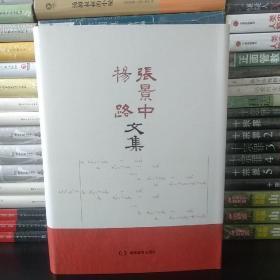 张景中杨路文集