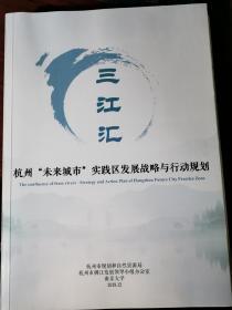"""三江汇:杭州""""未来城市""""实践区发展战略与行动规划"""