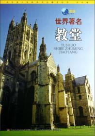 中华青少年科学博览丛书·文化卷---图说世界著名教堂(四色)