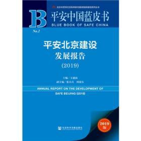 平安北京建设发展报告(2019)