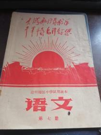 沧州地区小学试用课本语文第七册