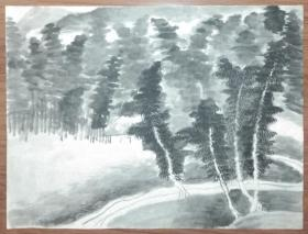 手绘真迹国画:无款20200317-20