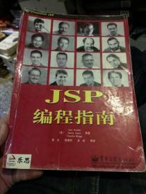 【中文版一版一印】JSP编程指南 黎文  译  电子工业出版社9787505366428