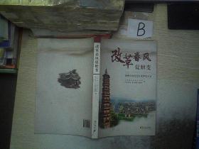 改革春风促嬗变: 连州市农村综合改革启示录...