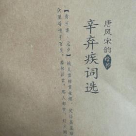 六品堂练字帖《唐风宋韵:辛弃疾词选》
