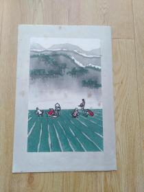 五六十年代朵云轩木板水印版画——山区之春