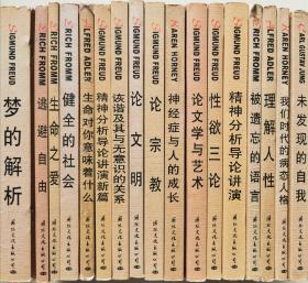 精神分析经典译丛(全17册)