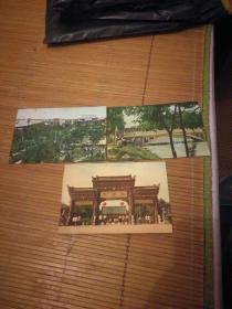 六七十年代明信片  三张合售