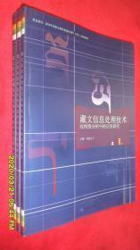 藏文信息处理技术在网络分析中的应用研究