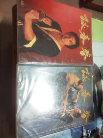 咏春拳  (上下两册)原版书