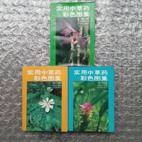 实用中草药彩色图集1-3