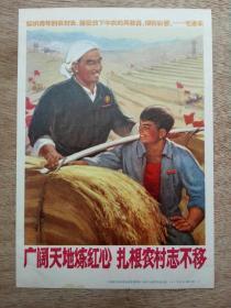 广阔天地炼红心 扎根农村志不移 宣传画) 上海市革命组出版社