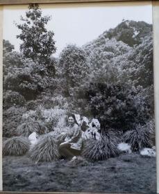 上世纪七,八十年代一国之王西哈努克摄于杭州,上海照片赠两张