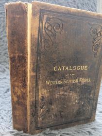 1876年  CATALOGUE OF THE WESTERN SCOTTISH FOSSILS《苏格兰西部化石目录 》少许插图  内有笔迹   17.5X12CM