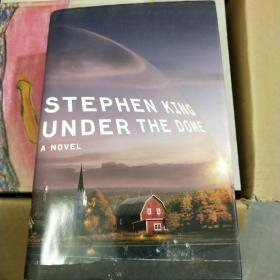 Under the Dome:A Novel