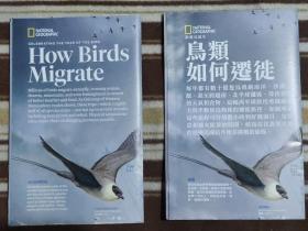 National Geographic国家地理杂志地图系列之2018年3月 How Bird Migrate 鸟类如何迁徙  中英文两张合售