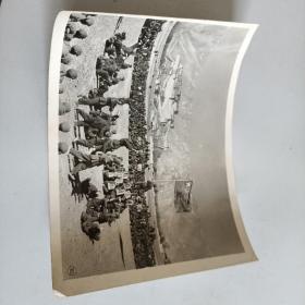 文革照片9张合售最小的32开大 毛选尺寸