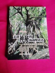 走进神秘的海南呀诺达 -热带雨林植物本草图鉴