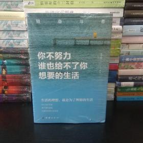 致奋斗者系列 全五册