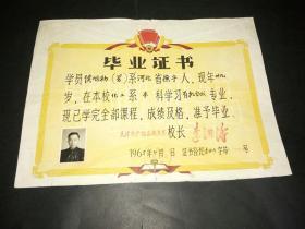 1965年大学毕业证书一份(相片、印章完整)