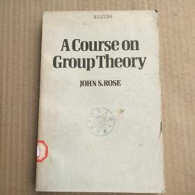 A course on group theory(P3295)