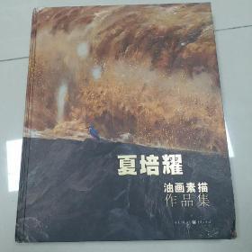 夏培耀油画作品集