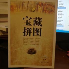 宝藏拼图  中国青年出版社