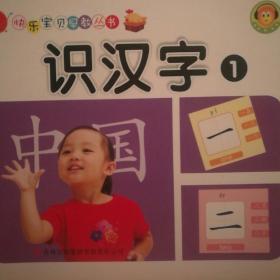 快乐宝贝早教丛书:识汉字1