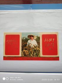 少见《热烈庆祝伟大领袖毛主席光辉《五。七指示》发表五周年》画片——海军东海舰队敬印1971.5(尺寸19.2✘9.8cm)正面:毛主席照,毛主席语录,林彪题词。背面:《毛泽东同志给林彪同志的信》——(位置:6-208)