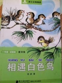 南方分级阅读·一年级·相遇白色鸟