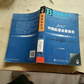 2007中国能源发展报告