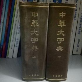 中华大字典上下册