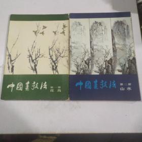 中国画技法,花鸟,山水,2本合售