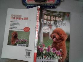 卷毛狗狗的日常护理与驯养
