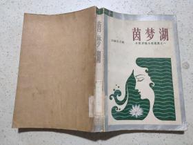 茵梦湖 (外国抒情小说选集之一)