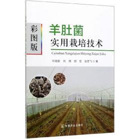 羊肚菌栽培技术资料大全羊肚菌种植技术教材教程2光盘3书籍新