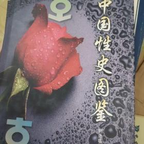 中国性史图鉴(上下卷)