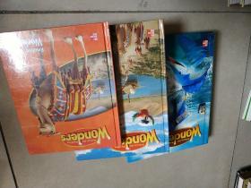 McGraw -Hill Reading Wonders 美国加州教材 阅读与写作 3本合售