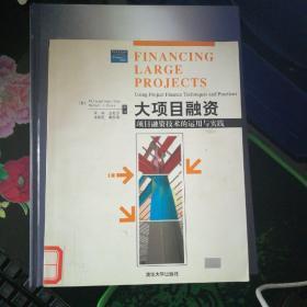 大项目融资:项目融资技术的运用与实践【16开】